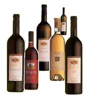 Click here to buy kosher wine
